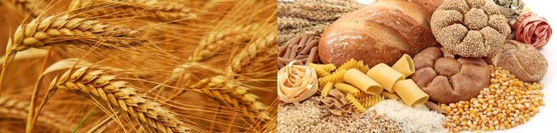 wheet.jpg - Free Image Hosting by imgup.net